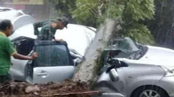 Pohon tumbang menimpa mobil milik warga di Bogor, Jawa Barat.