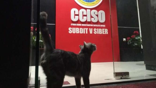 Suasana gedung Subdit Siber Polda Jatim tempat diperiksanya VA dan AS.