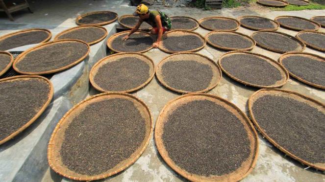Pekerja menjemur kedelai hitam untuk bahan pembuat kecap di industri kecap tradisional di Pekandangan, Indramayu, Jawa Barat