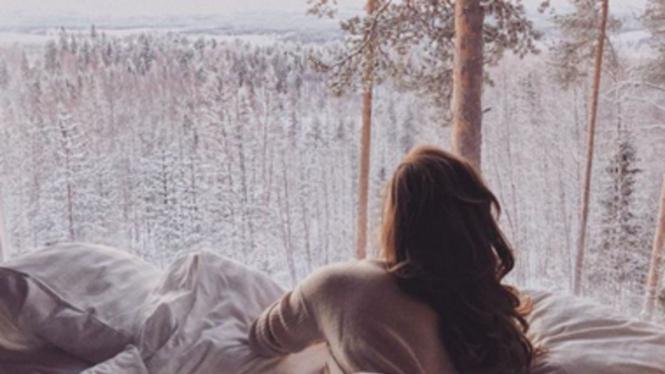 Sensasi Tidur 'menggantung' Di Pohon Pinus Dengan Cara Mewah