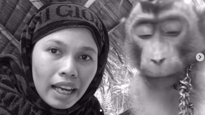Wanita dan monyet peliharaannya.