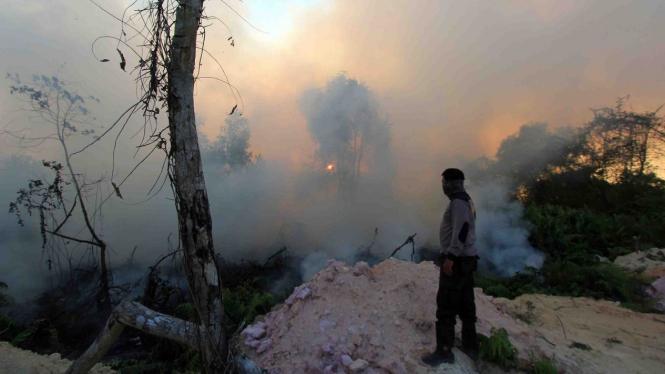 Seorang petugas kepolisian mengamati kebakaran hutan dan lahan di kecamatan Dumai Barat, Dumai, Riau, Selasa, 12 Februari 2019.