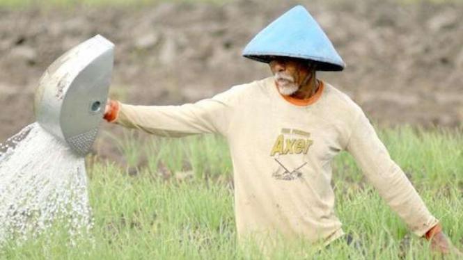 Tinggalkan Rentenir, Muruah Petani Harus Dikembalikan