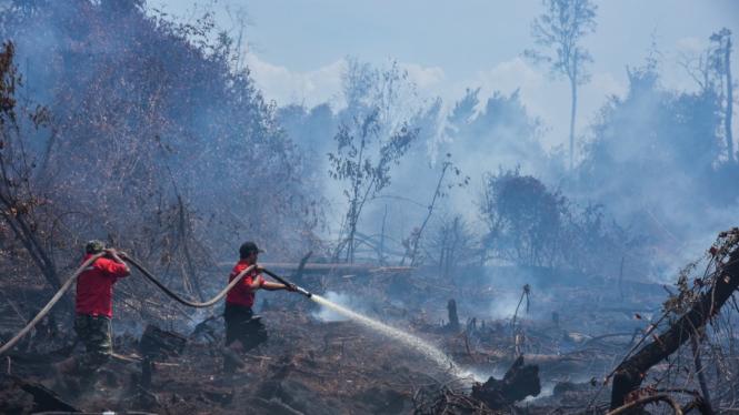 Para petugas berjuang memadamkan kebakaran hutan beberapa waktu lalu.