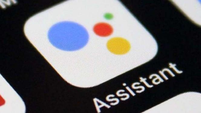 Google Assistant di iOS.