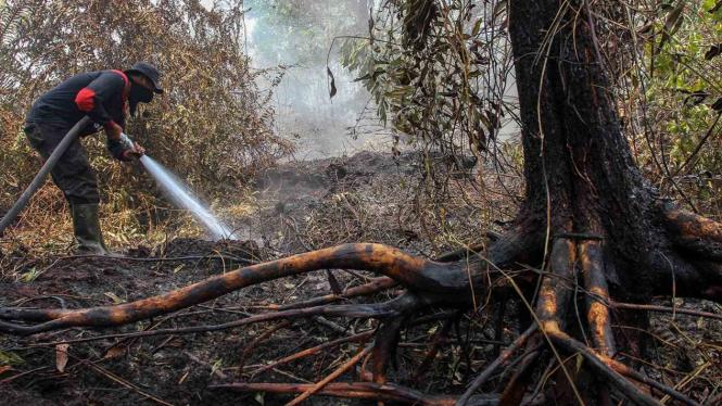 Luasan Lahan Terbakar di Riau