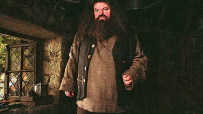 Sosok Hagrid di Film Harry Potter.