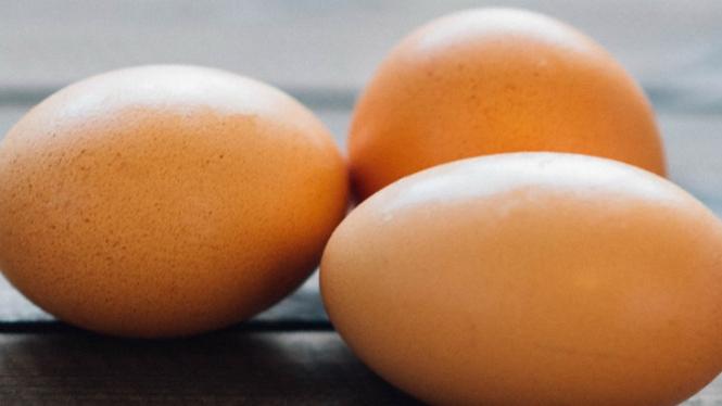 Ilustrasi telur.