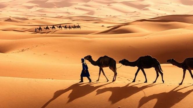 Gurun Sahara, Afrika Utara.