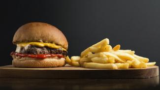 Ilustrasi fast food/makanan cepat saji.
