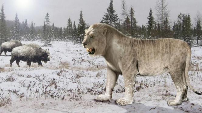 Singa Goa