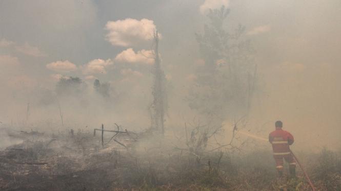 Petugas Pemadam Kebakaran Kota Pekanbaru berusaha memadamkan api yang membakar semak belukar dan pepohonan ketika terjadi kebakaran lahan gambut di Pekanbaru, Riau, Senin 25 Maret 2019.