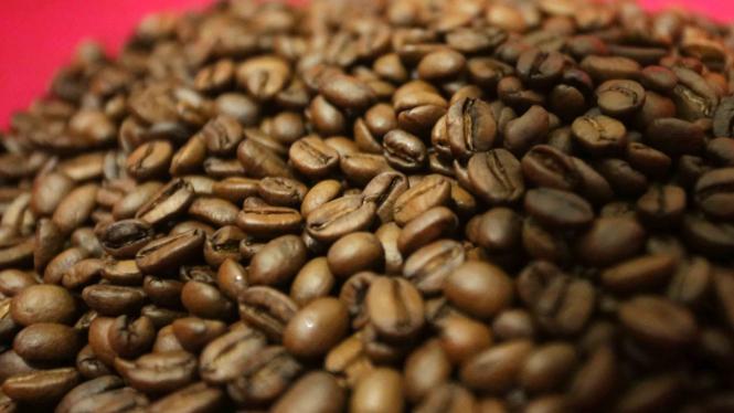 sorot kopi jawa barat - Biji kopi yang siap di giling