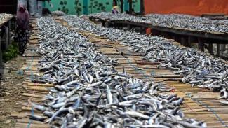 https://thumb.viva.co.id/media/frontend/thumbs3/2019/03/29/5c9e0e4bbdfea-pekerja-menjemur-ikan-saat-proses-pengasinan-di-kawasan-muara-angke-jakarta-se_325_183.jpg