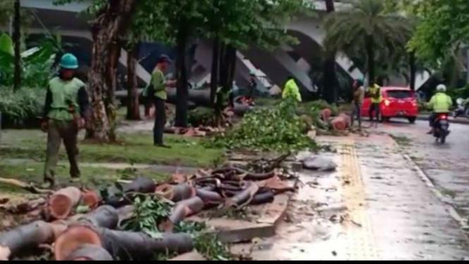 Petugas merapikan pohon tumbang di kawasan Semanggi, Selasa, 2 April 2019.