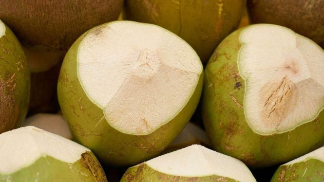 Ilustrasi kelapa hijau.