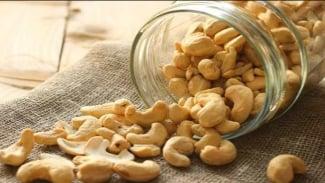 Ilustrasi kacang mete.