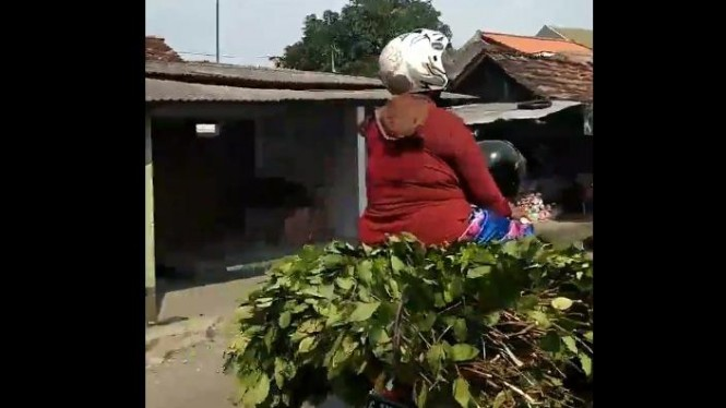 Ibu-ibu naik daun