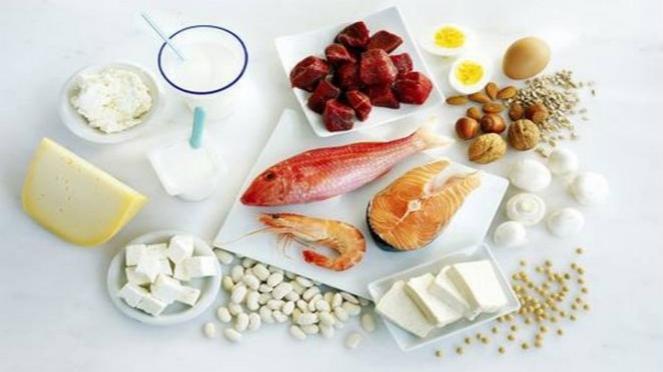 Ilustrasi makanan tinggi protein.