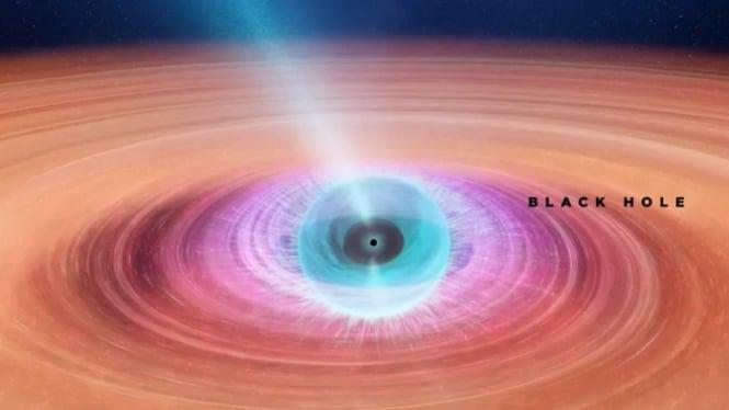 Lubang hitam di sistem biner V404 Cygni