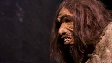 Ilustrasi replikasi wajah manusia Denisovan