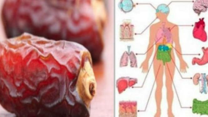 Ilustrasi manfaat kurma untuk tubuh.