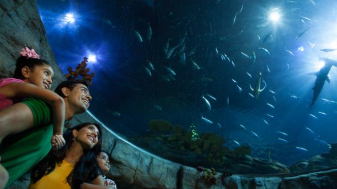 Grand Aquarium Ocean Park Hong Kong