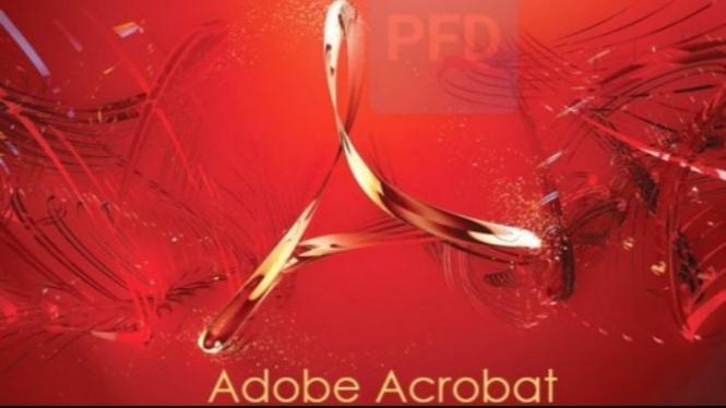 Adobe Acrobat Reader.