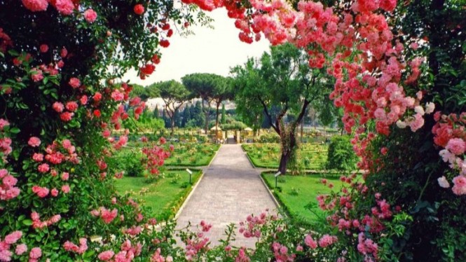 Taman bunga mawar di Roma.