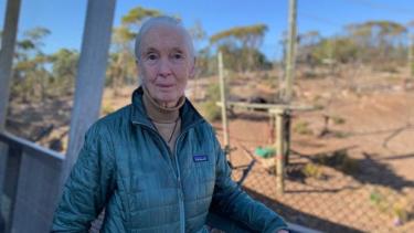 https://thumb.viva.co.id/media/frontend/thumbs3/2019/05/16/5cdd12b167e6f-ahli-primata-dunia-desak-australia-lebih-serius-atasi-perubahan-iklim_375_211.jpg