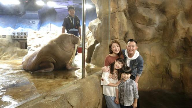 Meet the Walrus, Ocean Park Hong Kong