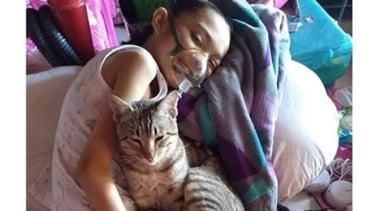 Seekor kucing bersama majikannya