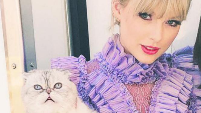 Taylor Swift dan salah satu kucing peliharaannya.