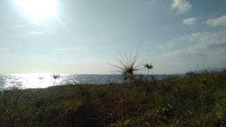 Pantai Selingkuh di Kota Mataram, Nusa Tenggara Barat.