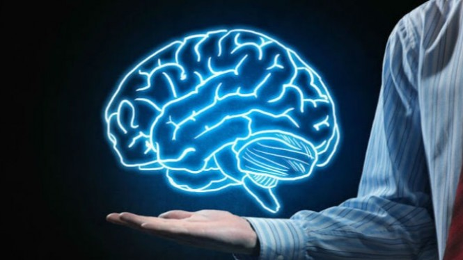Ilustrasi otak.