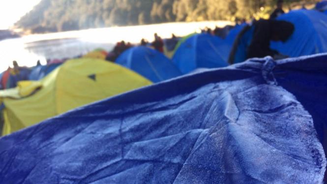 Fenomena frozen atau embun upas di Taman Nasional Bromo Tengger Semeru di Jawa Timur.