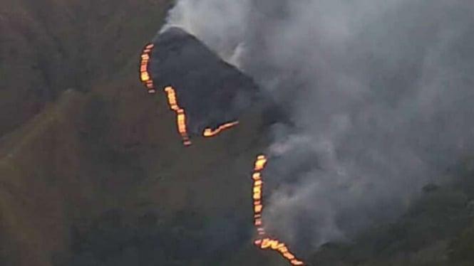 Ilustrai salah satu bukit di Gunung Rinjani terbakar.