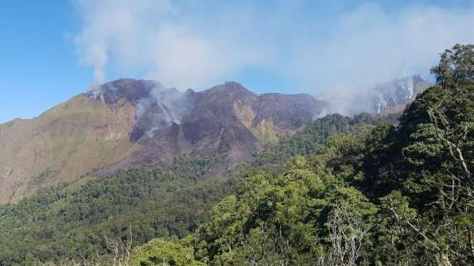 Ratusan hektare lahan di Gunung Rinjani terbakar.