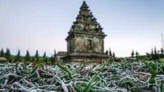 Cuaca dingin di Dieng menyebabkan fenomena