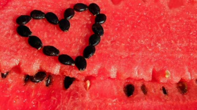 Biji semangka.