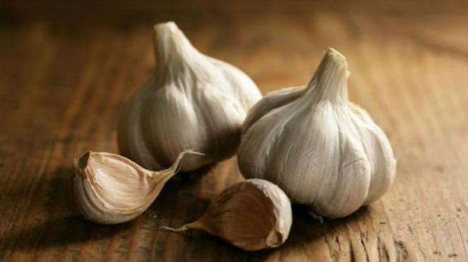 Ilustrasi bawang putih.