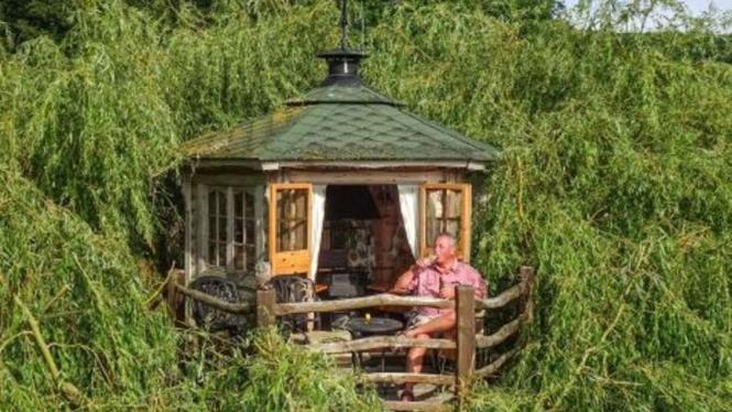 Terry membangun rumah pohon