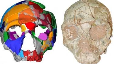 https://thumb.viva.co.id/media/frontend/thumbs3/2019/07/12/5d27d46769a40-homo-sapiens-paling-awal-ditemukan-di-luar-afrika-diyakini-berusia-210-000-tahun_375_211.jpg