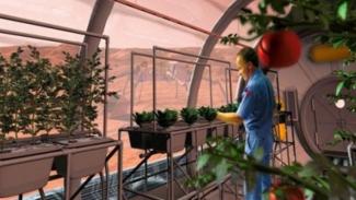 Bertanam di Mars