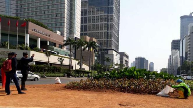 Tanaman menghiasi bekas lokasi bambu getah getih di kawasan Bundaran HI.