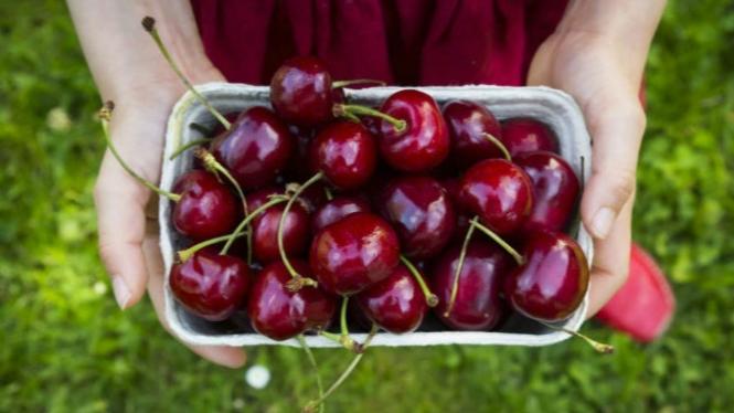 Ilustrasi buah ceri.