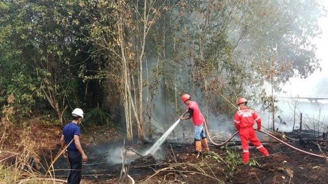 Proses Pemadaman Kebakaran Hutan dan Lahan di Riau.