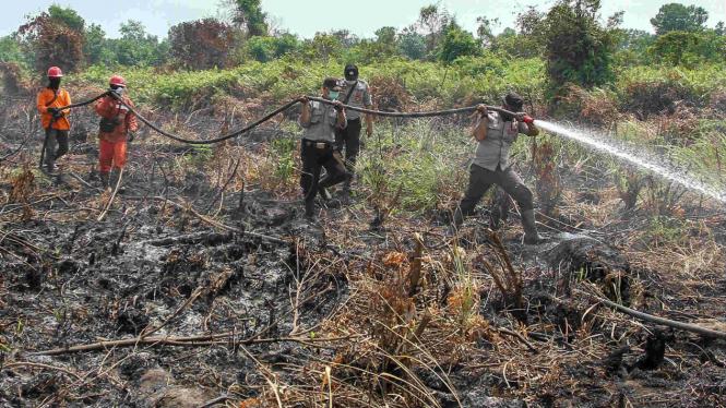 Ilustrasi petugas memadamkan kebakaran hutan dan lahan