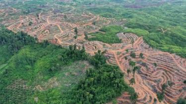https://thumb.viva.co.id/media/frontend/thumbs3/2019/08/12/5d50b1f9aea8e-ilmuwan-memperingatkan-kita-untuk-berhenti-membuat-kerusakan-di-muka-bumi_375_211.jpg