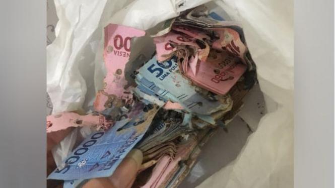 Uang dimakan rayap.